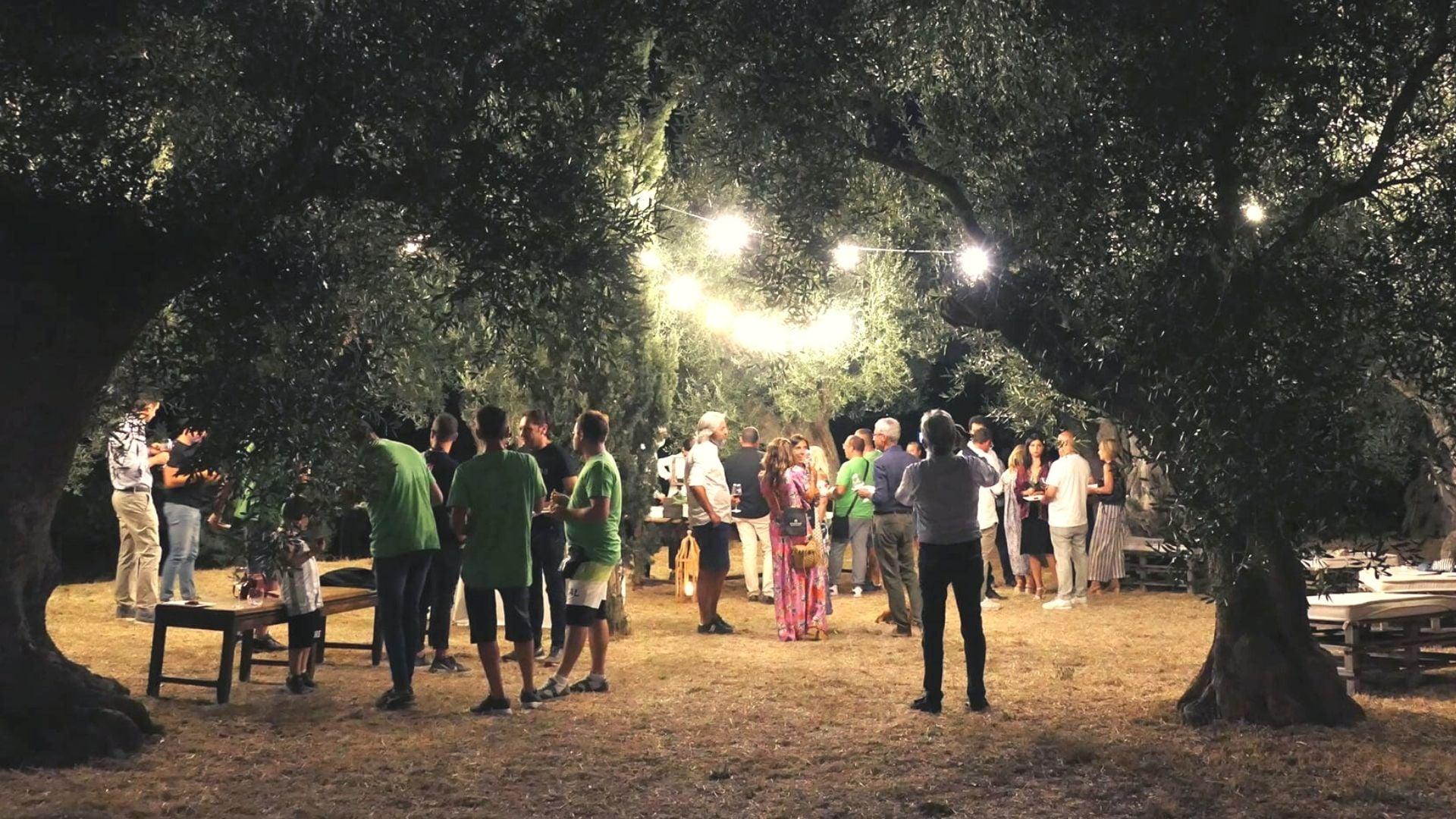 vendemmia notturna in masseria amastuola wine resort